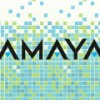 amaya poker network