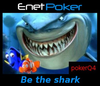 enet poker network be the shark not the fish